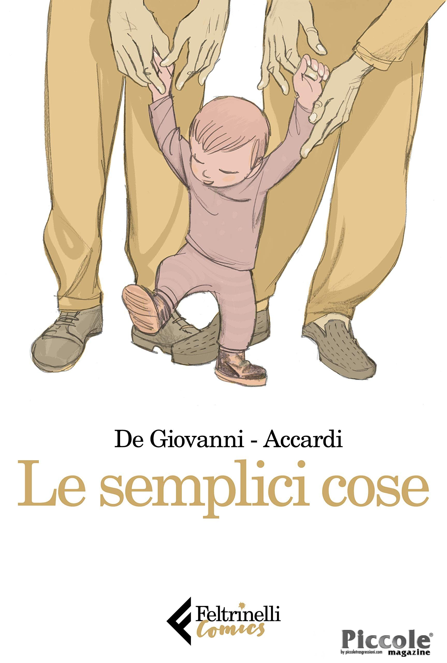 Le semplici cose di Massimiliano De Giovanni e Andrea Accardi