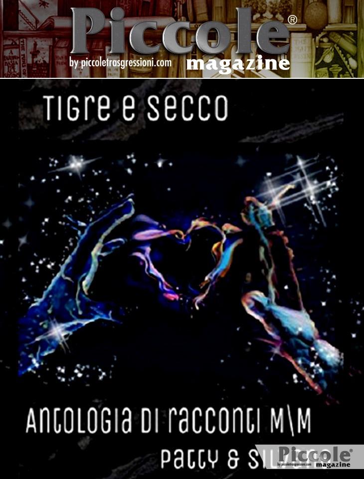 Foto copertina del libro Tigre e Secco: Antologia di racconti M\M di Patty Balossino e Silvana Cino